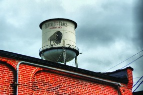 Buffalo_roof